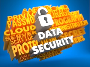 Protect your business reputation with security services from Lazer Web Services